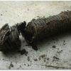 clogged_corrugated_drain-300x225