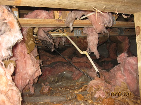 THIS INSULATION WAS ABOUT 5 YEARS OLD